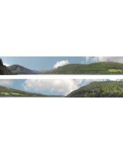 "Art Printers 95264 idBackscene 201 N Gauge Forest Hills 9"" High"